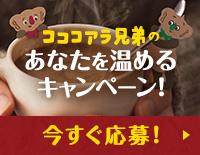 コココアラ兄弟のあなたを温めるキャンペーン!